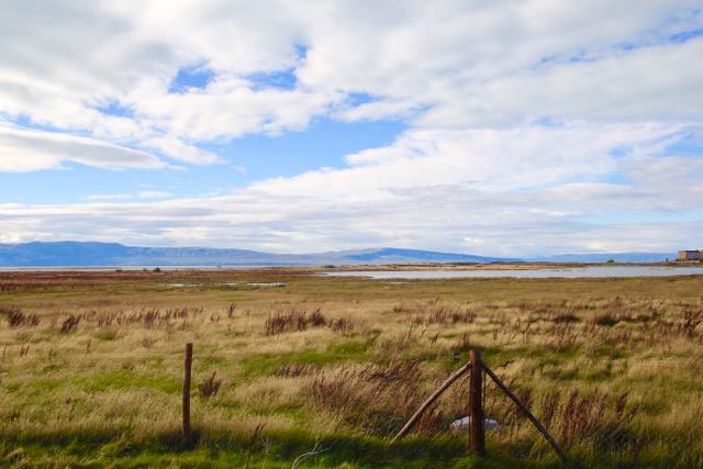 Patagonia Travel Guide: Laguna Nimez Reserve, El Calafate