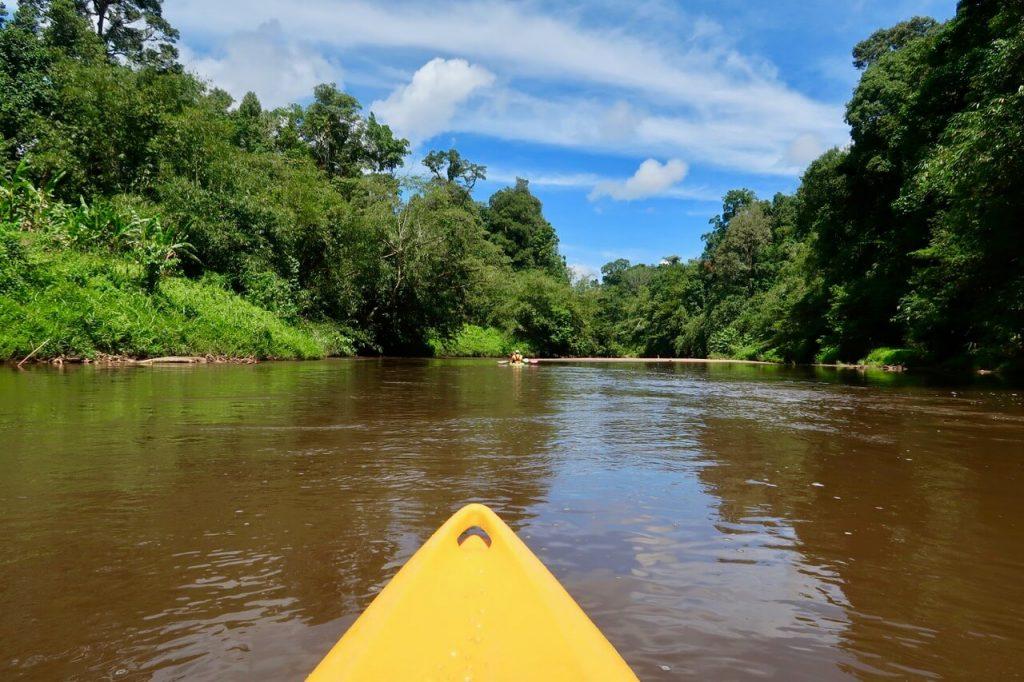 Kayaking on the Semadang River, Kuching, Sarawak